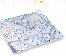 3d view of Suizo