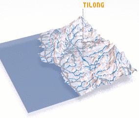 3d view of Tilong