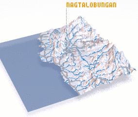 3d view of Nagtalobungan
