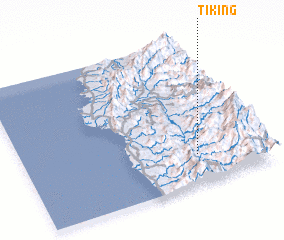 3d view of Tiking