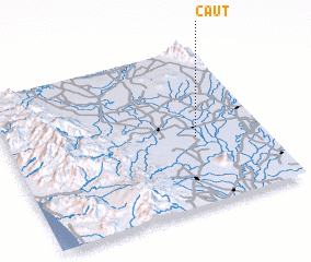 3d view of Caut