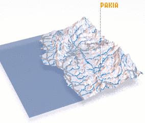 3d view of Pakia