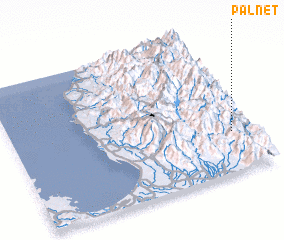 3d view of Palnet