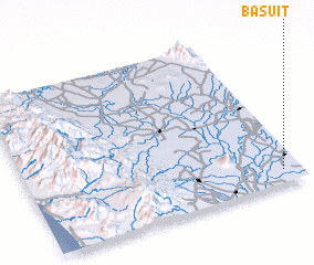 3d view of Basuit