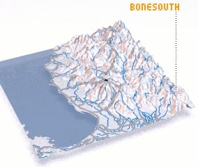 3d view of Bone South