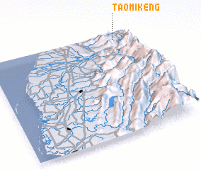 3d view of T\
