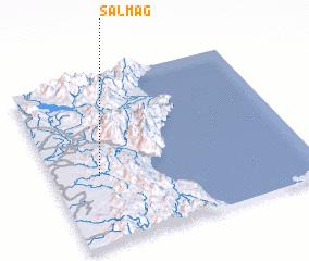3d view of Salmag