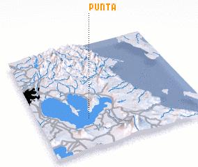 3d view of Punta