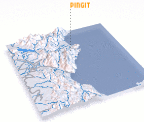 3d view of Pingit