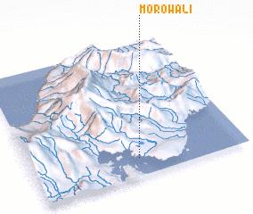 3d view of Morowali