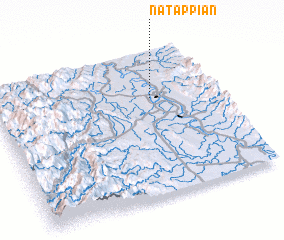 3d view of Natappian