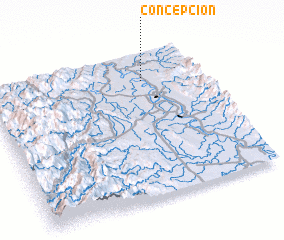 3d view of Concepcion