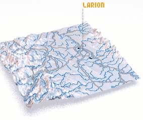 3d view of Larion