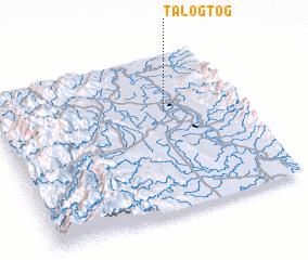 3d view of Talogtog