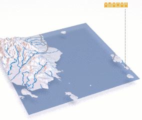 3d view of Anahaw