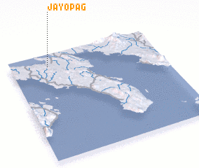 3d view of Jayopag