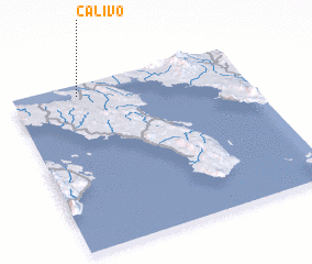 3d view of Calivo
