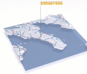 3d view of Dungayong