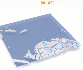 3d view of Palate
