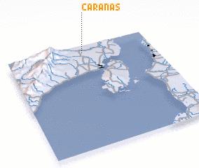 3d view of Caranas