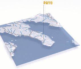 3d view of Payo