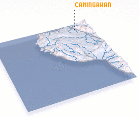 3d view of Camingawan
