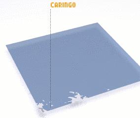 3d view of Cariñgo
