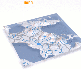 3d view of Hobo