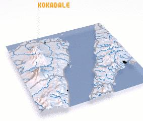 3d view of Kokadale