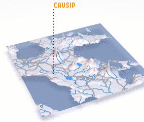 3d view of Causip