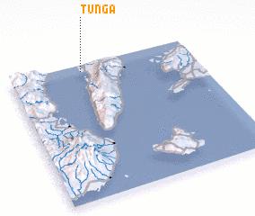 3d view of Tunga