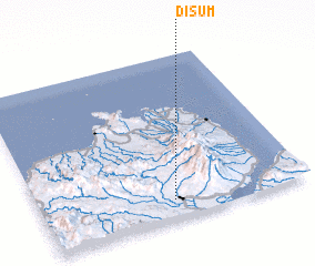 3d view of Disum
