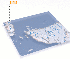 3d view of Tiris