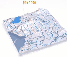 3d view of Bayanga