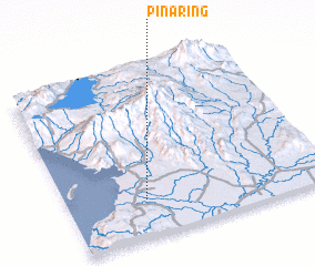 3d view of Pinaring