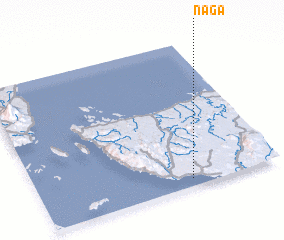 3d view of Naga