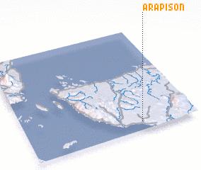 3d view of Arapison