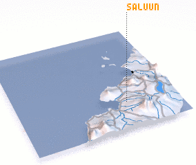 3d view of Saluun