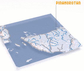 3d view of Pinamorotan