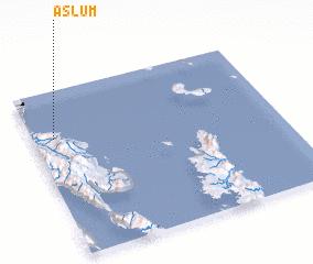 3d view of Aslum