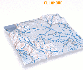 3d view of Culambug