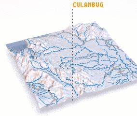 3d view of Culambug