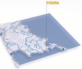 3d view of Pinama