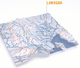 3d view of Lobogan