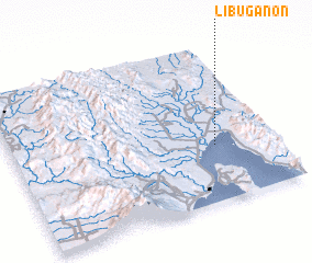 3d view of Libuganon