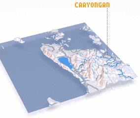 3d view of Caayongan