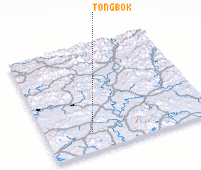 3d view of Tongbok