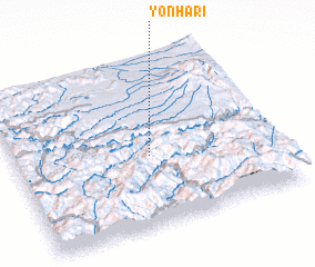 3d view of Yŏnha-ri