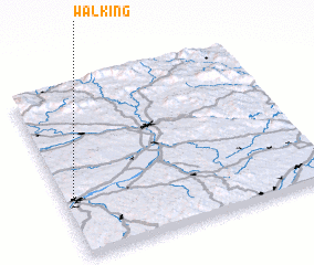 3d view of Walking