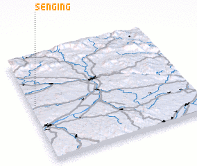 3d view of Senging